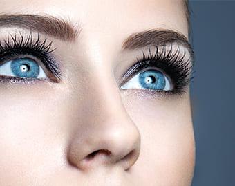 The magefy eyelashes Full Review [2019 Update]